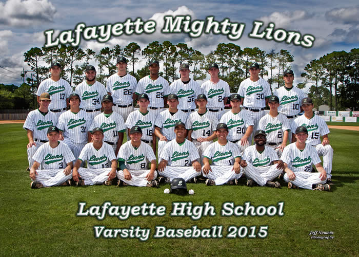 15002 LHS Lions Baseball Team